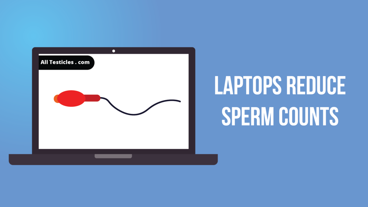 Laptop sperm count